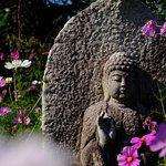 Фотография Hannyaji Temple