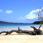 Photo of Danae Beach