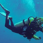 Key Largo group dive trip