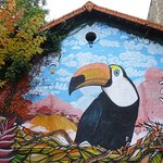 Fresque le Toucan Foto