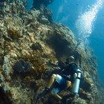 Фотография Sunrise Divers