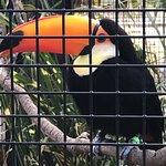 Tanganyika Wildlife Park Picture