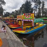 Foto de Floating Gardens of Xochimilco