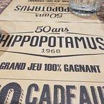Photo of Hippopotamus