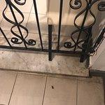 Queste sono delle foto della sala da pranza del San Anton Hotel   Come potete vedere blatte e scarafaggi erano dappertutto: dietro le sedie, sotto i tavoli, sul pavimento in mezzo alla sala, perfino sui vassoio dove c'erano le tazzine per la colazione!  Una situazione mai vista prima in un hotel, condizioni igieniche assurde!  Sconsiglio questo hotel vivamente