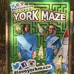 Bild från York Maze