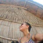 Anaconda Amazon Island ภาพถ่าย