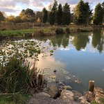 Woodhouse Farm Caravan and Camping Park Image