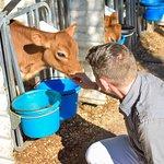 Foto di Lapp Valley Farm