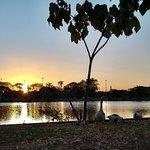 Parque da Cidade (Dona Sarah Kubitschek) Foto