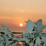 Foto de Zeebop by the Sea