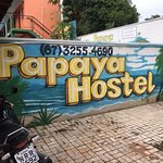 Papaya Hostel Photo