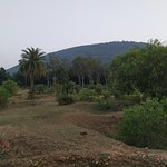صورة فوتوغرافية لـ Susunia Hills