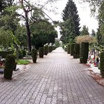 Very peaceful cemetery with many trees