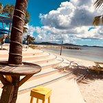 Palm Tree Charters-billede