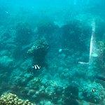 Foto van Ithaa Undersea Restaurant