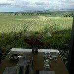 Foto de Brancott Estate Cellar Door and Restaurant