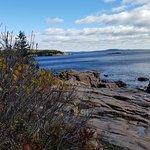 Frenchman's Bay Acadia National Park