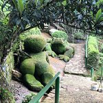 Photo of Jardim do Nego