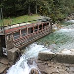 Photo de Lynn Canyon Park