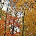 Foto van Cuyahoga Valley National Park