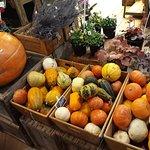Φωτογραφία: Oxford Covered Market