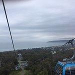 Photo of Arthurs Seat Eagle