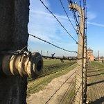 Foto de Krakow Tours