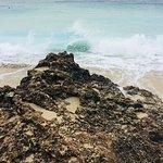Foto de Paradise Bay