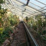 Billede af Botanical Gardens (Botanisk Have)