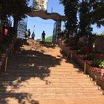 Hanging Gardens (Ferozeshah Mehta)照片