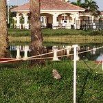 Miramar Regional Park Photo