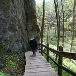 Photo of Maquoketa Caves State Park