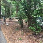 Foto de Jessie M. Honeyman Memorial State Park