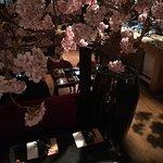 Фотография Sumo Sushi & Grill