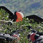 Foto di Red Travel Mexico