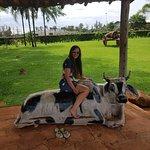 Φωτογραφία: Parque do Peao