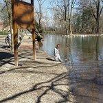 Foto van Bosco di Legnano (Parco Castello)