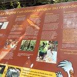 Parc zoologique et forestierの写真
