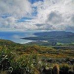 オタゴ半島の写真