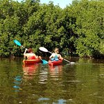 Island Kayak Tours, LLC-bild