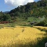 Bilde fra Thai Eco Trek Adventure