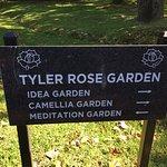Φωτογραφία: Tyler Rose Garden