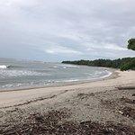 Photo of Playa de los Artistas