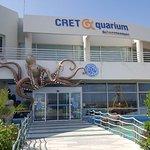 Φωτογραφία: Ενυδρείο Cretaquarium - Θαλασσόκοσμος