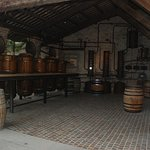 Фотография Nonino Distillatori