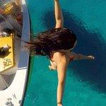 Bilde fra Dolphin Boat Safari