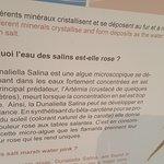 Foto di Salin d'Aigues-Mortes
