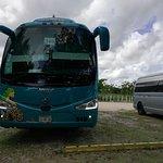 Photo of Cancun Bay Tours