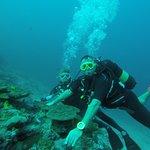 Billede af Diving Bluetribe Moofushi